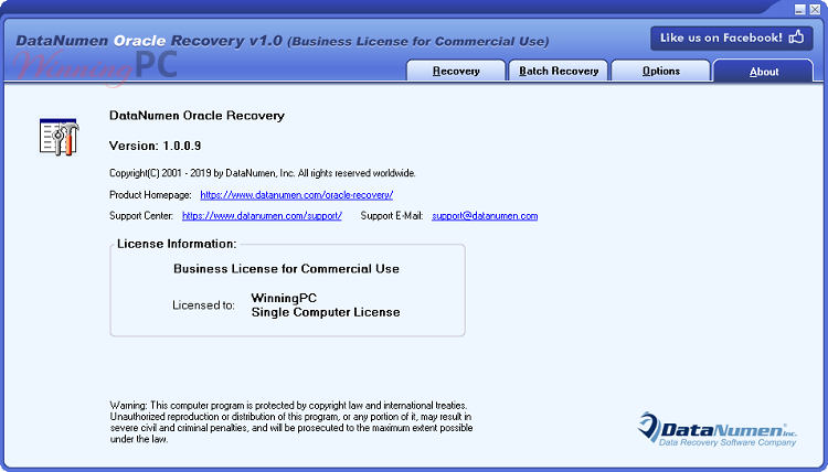 Datanumen Oracle Recovery License Info